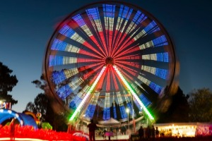 Floriade's after dark celebration NightFest is a sensory overload.