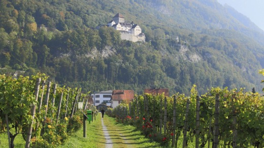 Vineyards along the Liechtenstein Trail.