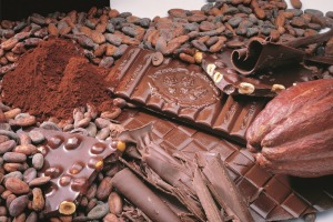 Festichoc offers a vast array of choc-themed activities.