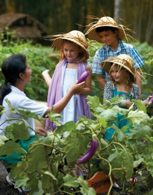 The kids garden tour at Four Seasons Bali resort at Sayan, Bali.