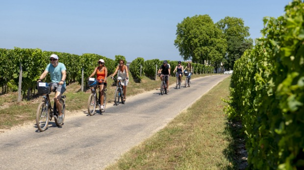 Cycling in the Medoc vineyards.