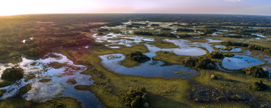 The Pantanal is a UNESCO World Nature Heritage site and Biosphere Reserve in Mato Grosso do Sul, Brazil.