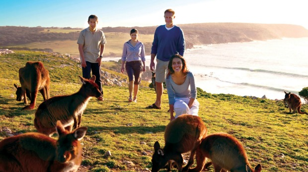 Kangaroo Island was recently hit by bushfires and is hoping tourists will return.