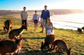 Kangaroo Island, South Australia. Domestic tourism is likely to drive the travel industry's recovery.