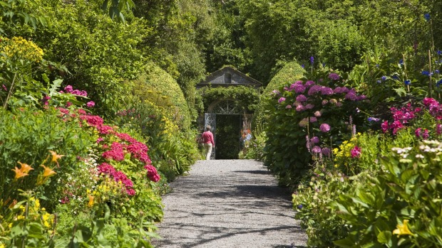 Double Perenniel borders in the Walled Garden on Garinish Island