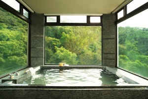 The Gaia Hotel has hot spring baths in its suites.