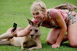 A tourist gets a selfie with an unimpressed kangaroo.