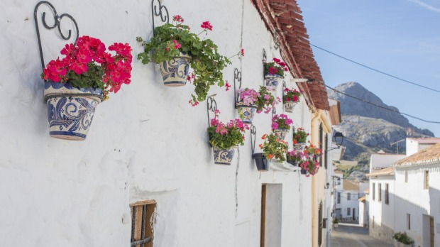 The whitewashed village of Alfarnatejo is adorned with tubs of roses.