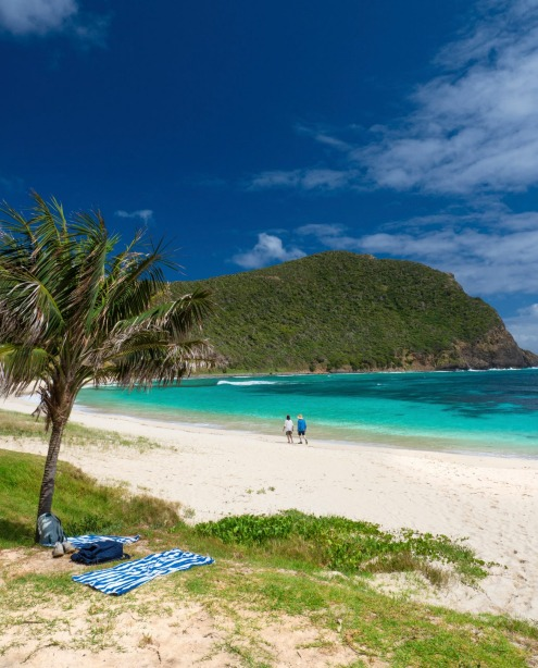 Lord Howe Island Beaches: Brad Farmer's 101 Best Australian Beaches: Australia's Top