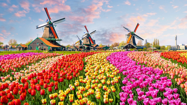 The Netherlands tourism drops 'Holland' in official rebranding