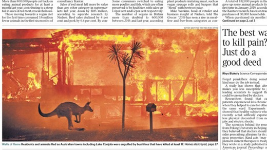 The front page of The Times newspaper in Britain featuring a kangaroo and burning house.