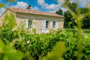 Gite Laplagnotte is a three-bedroom cottage in the heart of St Emilion wine country.