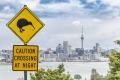 Kiwi bird warning sign in front of the city of Auckland, New Zealand.