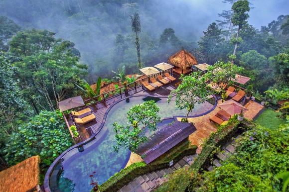 The Nandini Jungle Resort & Spa.