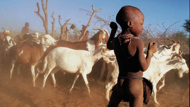 Eitha, a little Himba boy stands outside the ekraal, his homestead,  while goats are being chased out to graze for the day.