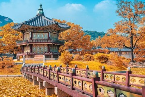 See the best South Korea has to offer on a nine-day tour.