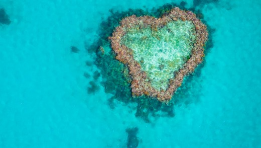 Heart Reef in the Great Barrier Reef, viewed from a seaplane.