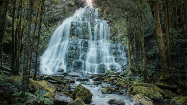 The Nelson Falls, a cascade waterfall, is located in the West Coast region of Tasmania.
