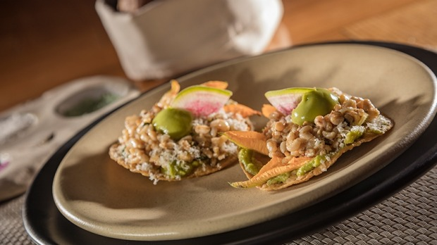 A tostada topped with ant larvae (known as escamoles in Mexico),
