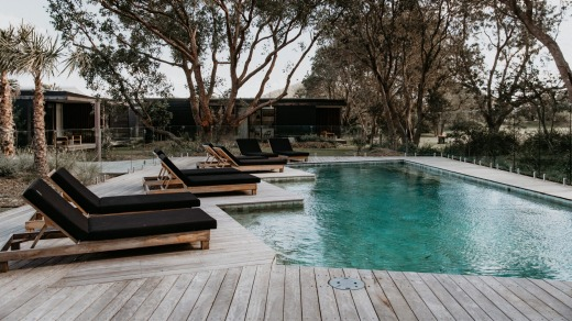 Prepare to be wowed by the pool area at the end of this walkway with its wooden deck, clear fencing, clean lawns, sun ...
