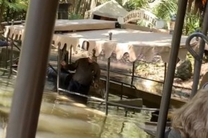 Disney World's Jungle Cruise ride sinks on Friday, Februrary 27. Pic from Twitter. Not for any other use.