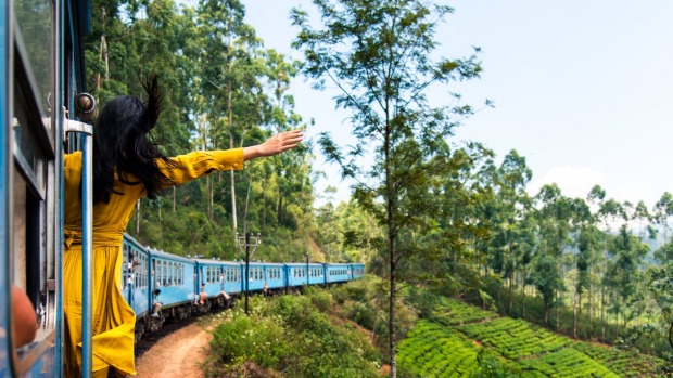 Train from Ohiya 01 Woman enjoying the train ride through Sri Lanka tea plantations tra13-sixbestSrilanka Txt by Elspeth ...
