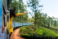 A woman enjoys the train ride through Sri Lanka tea plantations.