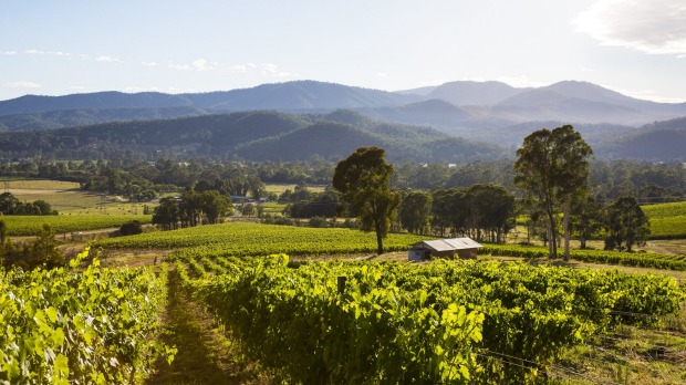King Valley's wineries sit along what has become known as Prosecco Road.