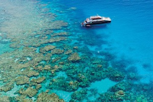 Dreamtime Dive & Snorkel is the first Aboriginal-themed reef operator on the Great Barrier Reef.