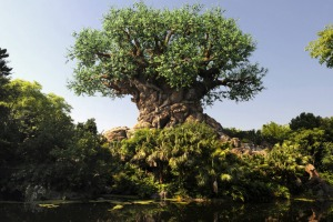 Animal Kingdom's The Tree of Life is located on Discovery Island, which took its name from the now-closed Walt Disney ...