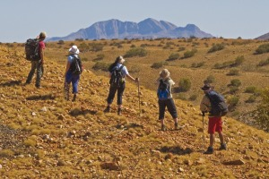 Can't go hiking in South America? There are plenty of spectacular hiking trails in Australia, such as the Larapinta walk ...