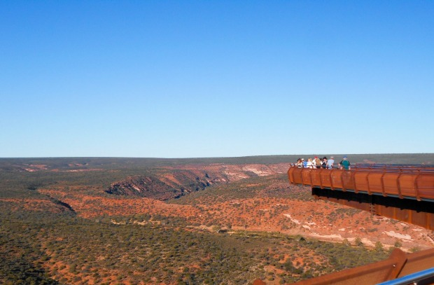 Consisting of two platforms jutting 25 and 17 metres beyond the rim of the Murchison River Gorge, the Skywalk is part of ...