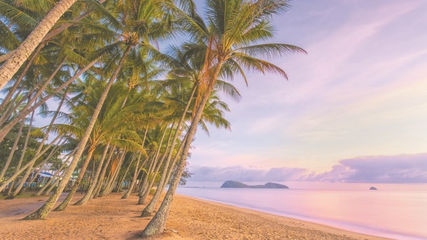 Palm Cove in Tropical North Queensland.