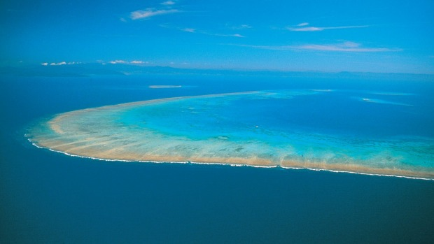 Enjoy a Great Barrier Reef cruise with Travelmarvel.