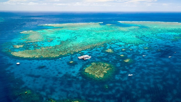 If the Queensland tropics are another country then the Great Barrier Reef is another planet.