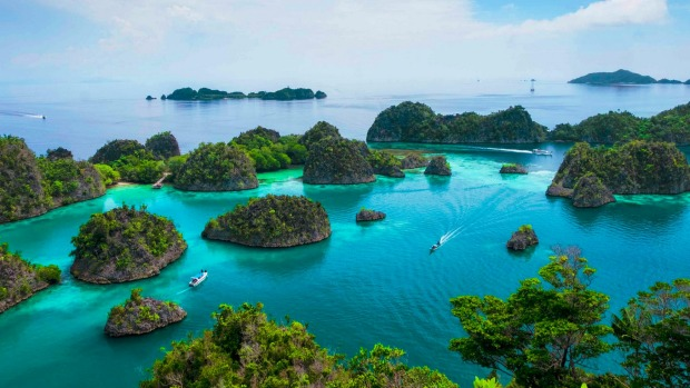 Coral reefs around Raja Ampat in Indonesia are healthier, but poachers have taken advantage of the lack of tourists.