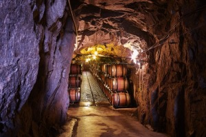 Supplied PR image for Traveller. Giaconda winery, Victoria. Pics for Ben Groundwater story. check for re-use.