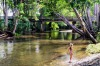 Gleniffer, Bellingen: Bellingen is home to several striking water holes but the one found just over the Never Never ...