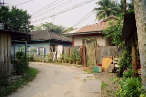 """Made up of 26 single-story wooden houses, which were once ubiquitous across Singapore, the """"kampong"""" has seen a boom in ..."""