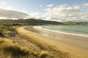Apollo Bay's beach is one of many in Victoria that is disappearing due to erosion.