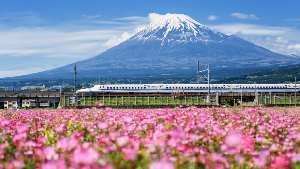 A Shinkansen train whizzes by Mt Fuji.