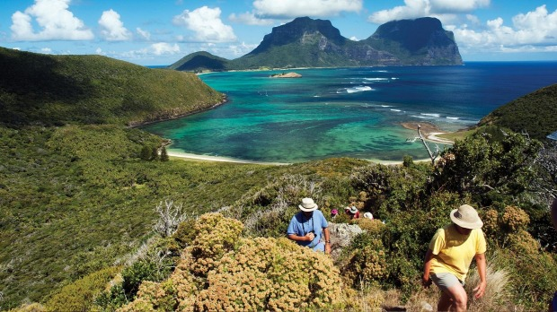 Discover Lord Howe Island and its tropical plants, birdlife and nature walks with Botanica.