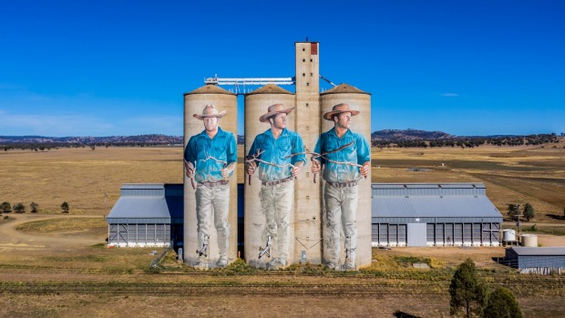 Barraba Silo Art, Tamworth.