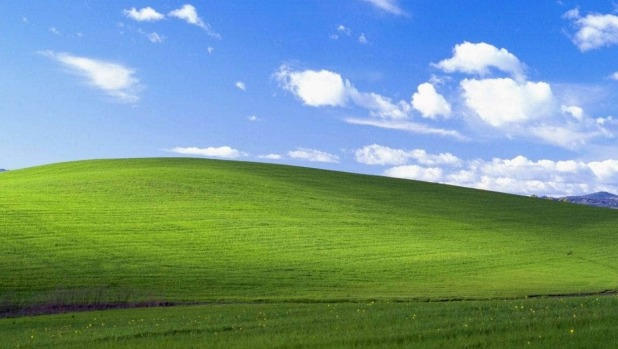 Look familiar?  Charles O'Rear's Californian hillside was beamed onto millions of computer screens in 2001.