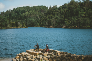Explore the mountain bike trails at Lake Derby.