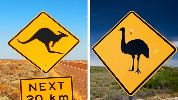 What do the two animals on Australia's coat of arms have in common?