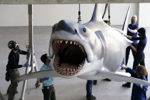 Jaws is lifted into a suspended position for display at the new Academy of Museum of Motion Pictures.