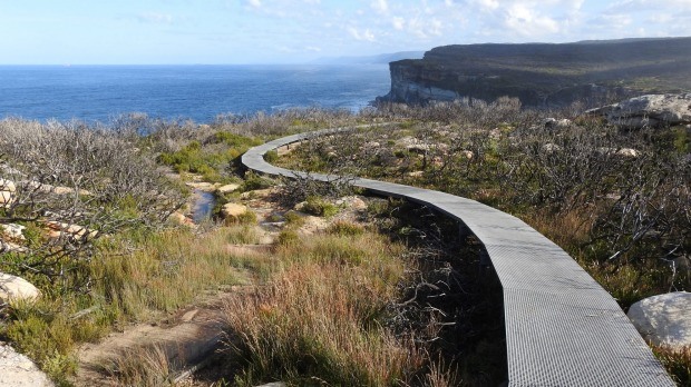 Royal National Park: Walk through scribbly gum and angophora forests and boronia-studded scrubland, drinking in ocean ...