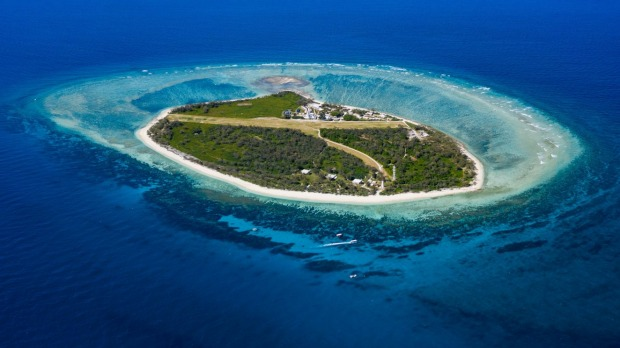 Lady Elliot Island's history is a tale of redemption as it has evolved from guano mining in the 1870s to a beacon of ...