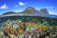 Coral gardens surrounding Lord Howe Island with views of Mount Lidgbird and Mount Gower. traxxsouthpacific Lord ...